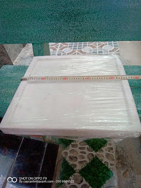 1059 - Dĩa lót chậu đá mài vuông 45cm