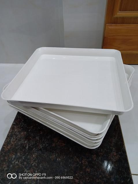 976  - Đĩa Nhựa vuông 40cm