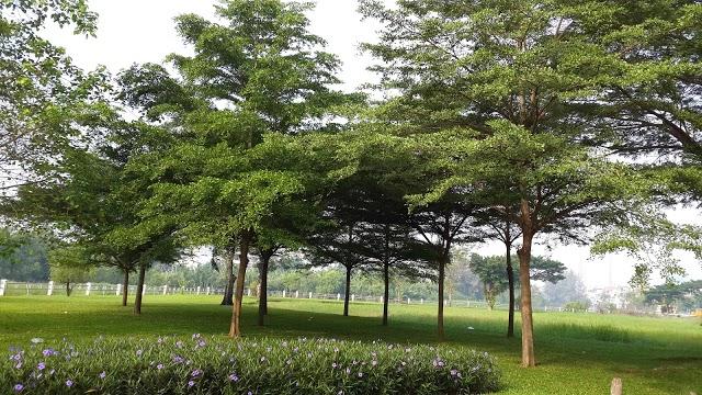 Công viên khu dân cư Q.7