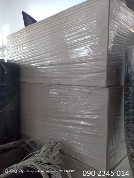 647 B - Chậu Đá mài trắng 100 x 40 x 40