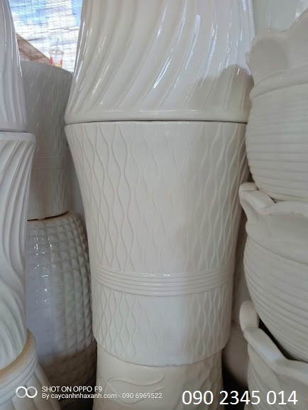 818 - Chậu sứ trắng  40 x 50