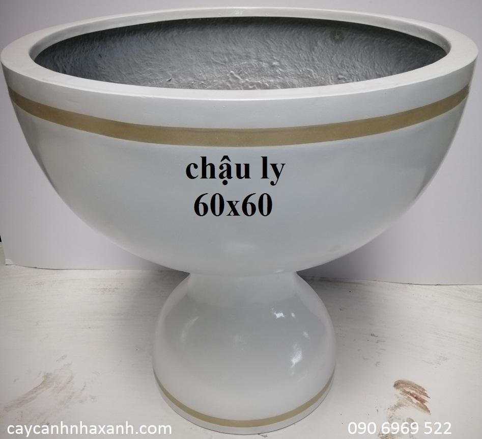1239 - Chậu Ly composite  60 x 60