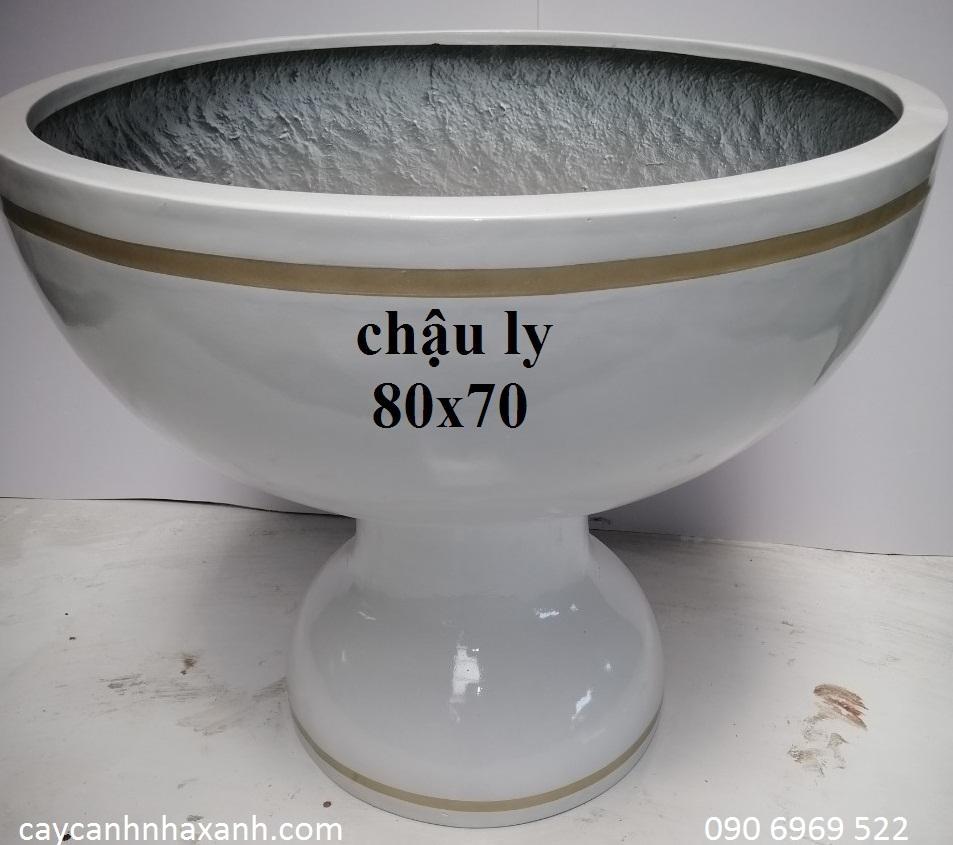 1240 - Chậu Ly composite  80 x 70