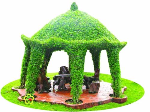 nhà vòm cây xanh